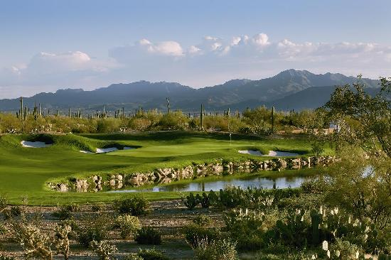 The Ritz-Carlton, Dove Mountain: Jack Nicklaus Signature Golf Course