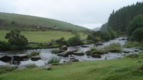 Dartmoor Nationalpark Foto