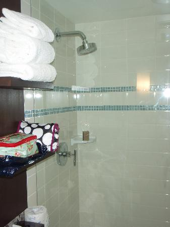 Aava Whistler Hotel: Shower