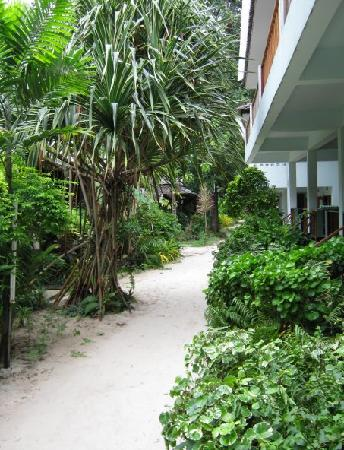 Chaweng Garden Beach Resort : pathway to restaurant, beach, pool