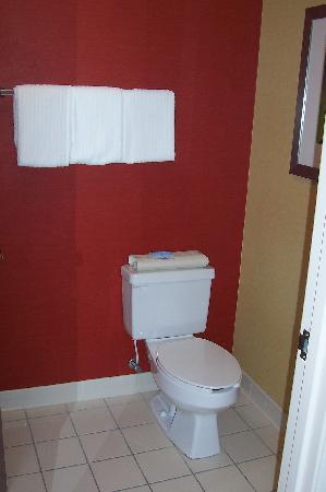 Courtyard Traverse City: Toilet