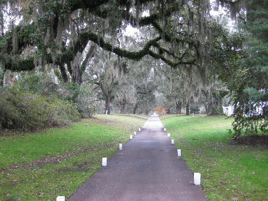Brookgreen Gardens: Brookgreen in December