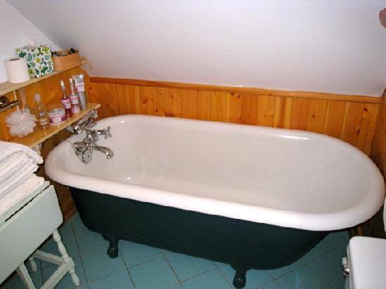 L'Iris Bleu: The Bathroom