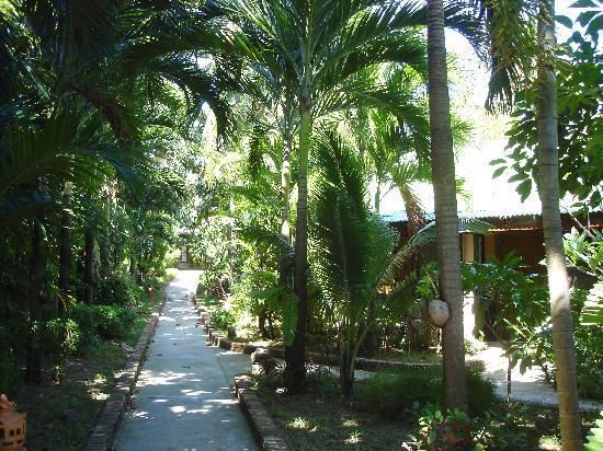 Golden Sand Inn: Gardens