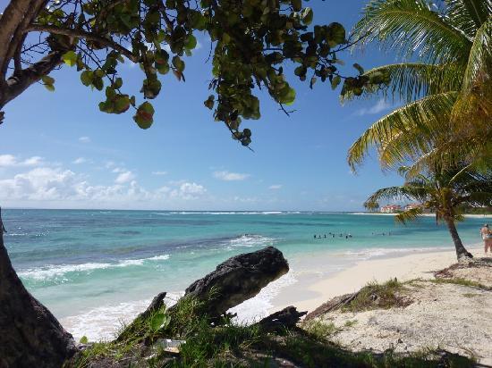 Saint Francois, Guadeloupe: Plage des Raisins Clairs