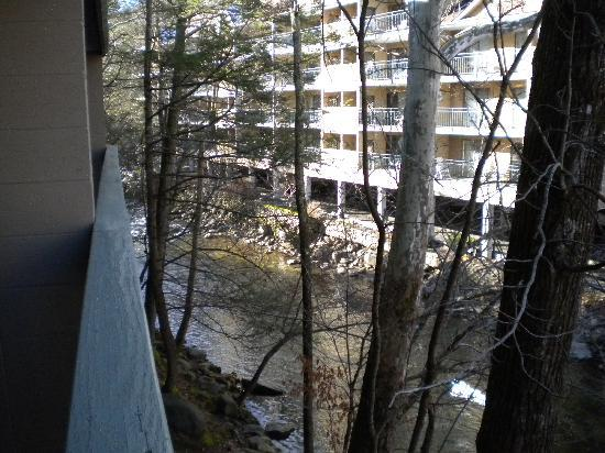 Riverhouse at the Park: Looking upstream from the porch of our room