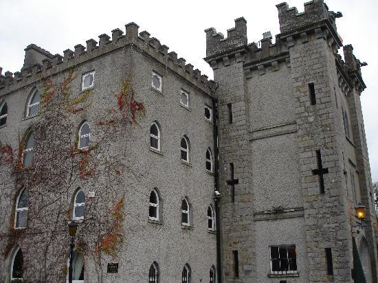 Kingscourt, Irlanda: Another view of Cabra Castle