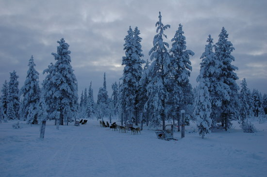 Saariselka, Finland: Some amazing scenery