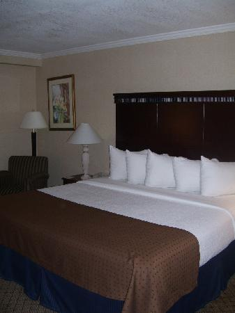 Holiday Inn Binghamton - Hawley St/Downtown: Relax in comfortable and newly re-designed guest room.