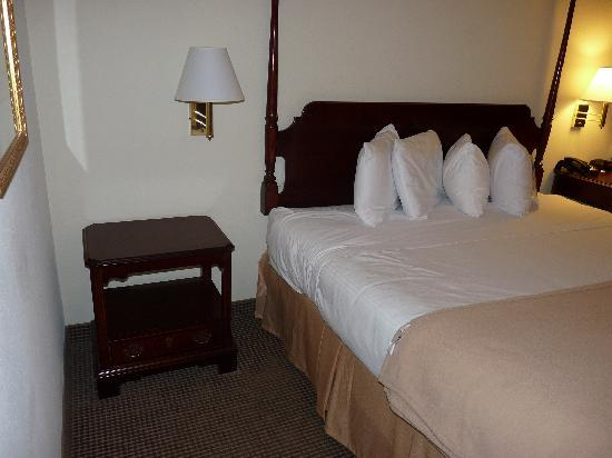 Baymont Inn & Suites Florence: King Bedroom - 2