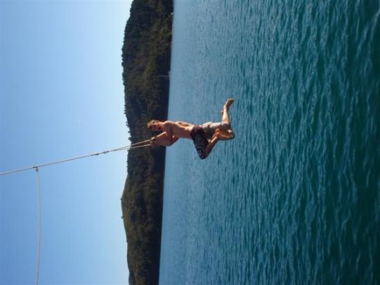 Great Barrier Island, Nueva Zelanda: yard swing