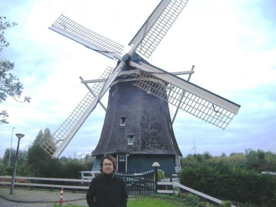 Haarlem, The Netherlands: Windmills of Your Mind....
