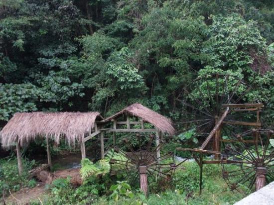 Panlong Paradise Resort: 德慶盤龍峽