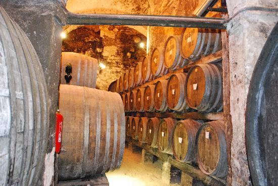 Cantina del Redi wine cellar in Montepulciano
