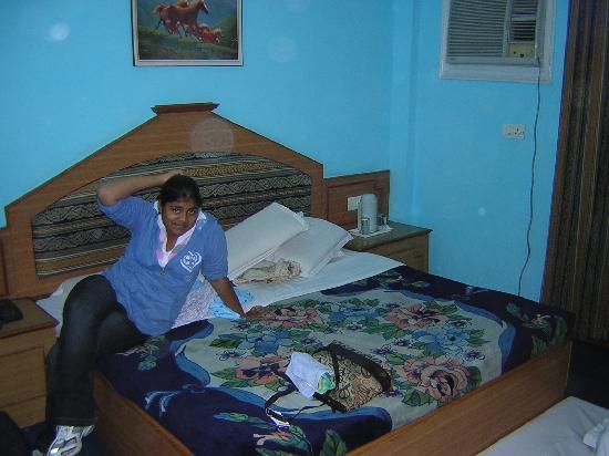 Hotel Kashmir Residency : bedroom
