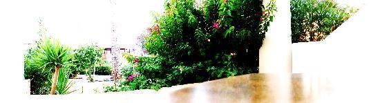 Ostria Resort & Spa : vue de la terrasse de la chambre