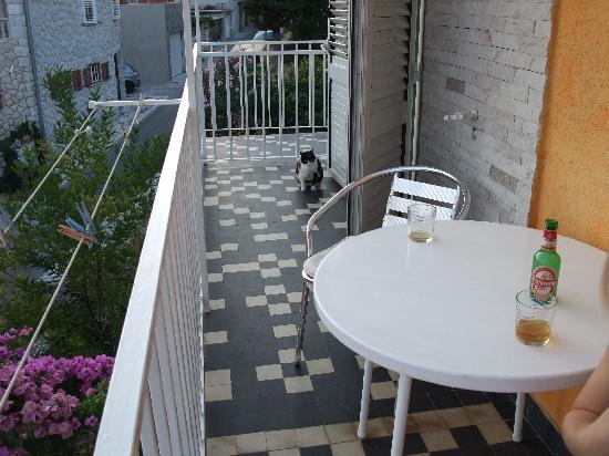 Jagoda and Ante Bracanovic House: Terrace (with one of the many cats on the island!)