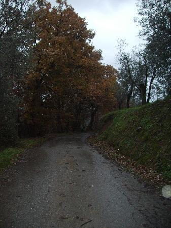 La Casa Medioevale : la strada che porta alla casa