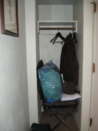 Rugged Country Lodge: Closet in room