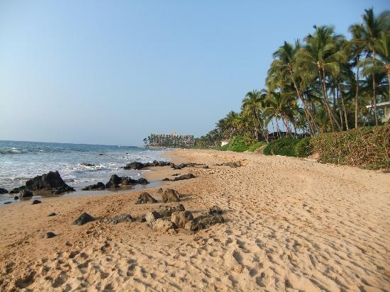 beach picture of days inn by wyndham maui oceanfront. Black Bedroom Furniture Sets. Home Design Ideas