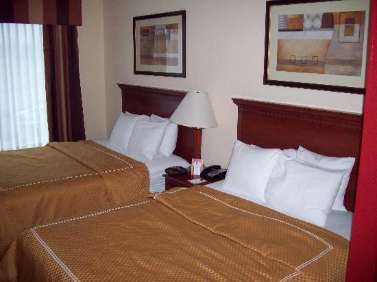 Comfort Suites Cincinnati Airport: 2 Queens