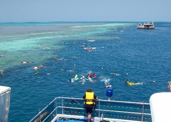 Azure Sea Whitsunday: Fanta Sea - Great Barrier Reef