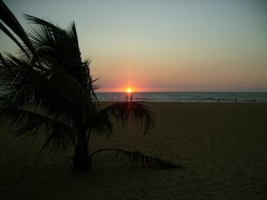 Bilde fra Negombo