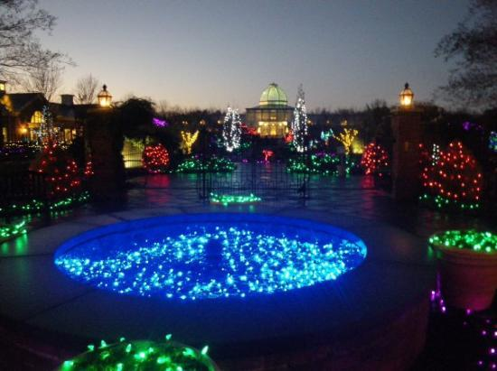 Butterfly picture of lewis ginter botanical garden richmond tripadvisor for Lewis ginter botanical gardens christmas