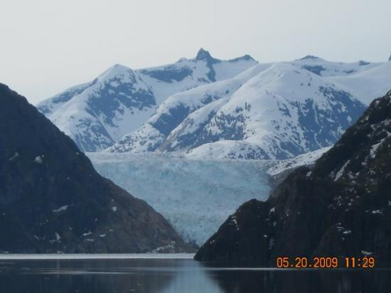 Tracy Arm Fjord: Huge glacier at Tracy Arm..which has been receding due to warmer weather.  The glacier is the ch