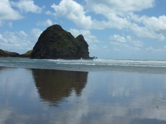 Lion Rock at Piha Beach