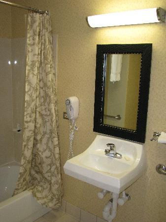 Fairfield Inn & Suites Dulles Airport: Bathroom (handicapped accesible)