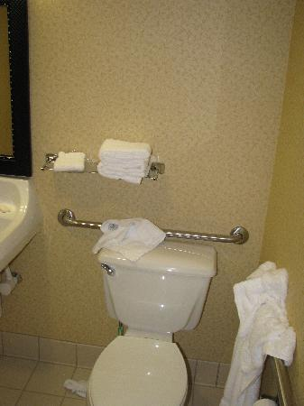 Fairfield Inn & Suites Dulles Airport : Toilet (handicapped accesible)