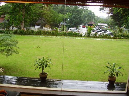 Rider's Lodge : View of the lawn from inside the reception area