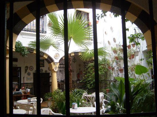 Hostal Seneca: Our window