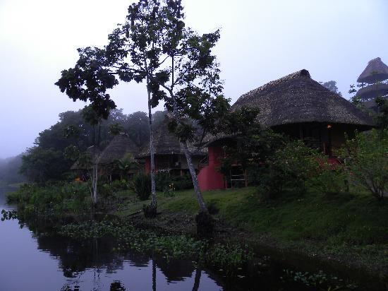 Yasuni National Park, เอกวาดอร์: My lodge at the end of the property