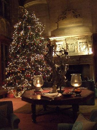 The Beautiful Christmas Tree Picture Of Bovey Castle