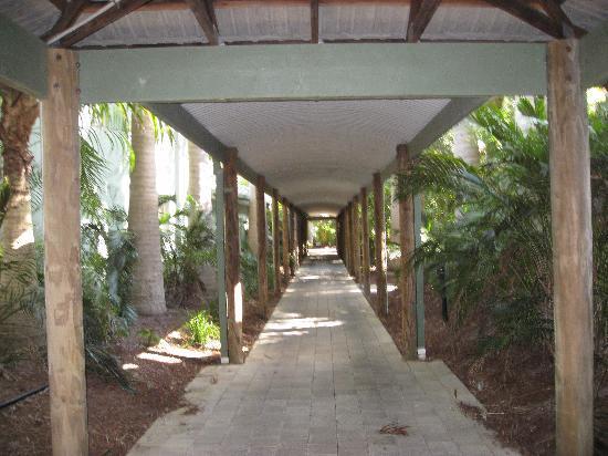 BreakFree Aanuka Beach Resort: walkway to pool