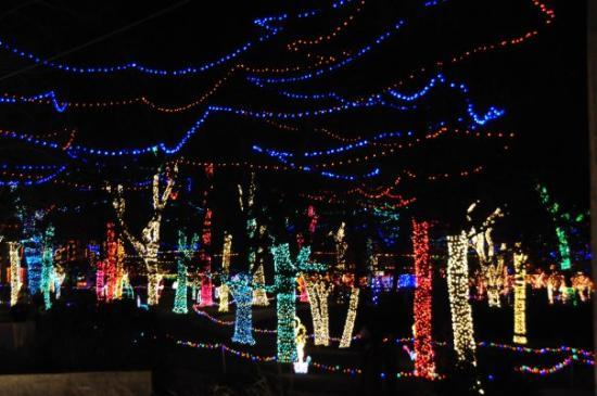 Rhema Church Christmas Lights Picture Of Tulsa