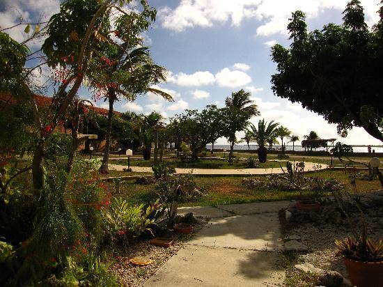 Sand Dollar Condominiums: Sand Dollar Grounds
