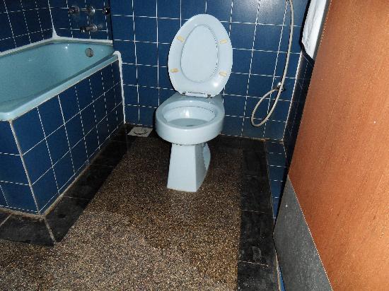 Eagle Bay Hotel Leaking Toilet