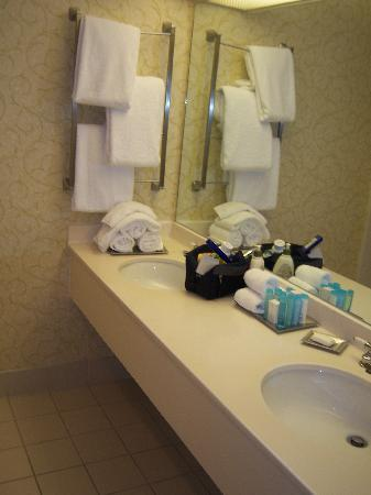 Hilton St. Louis Frontenac: bathroom counter