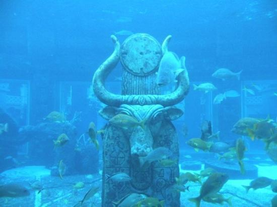 Is This The Lost City Of Atlantis Picture Of The Royal