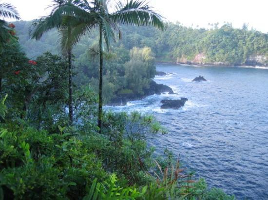 Tripadvisor Restaurants Hawaii Big Island