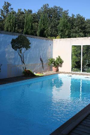 Le Clos du Puy : view on pool