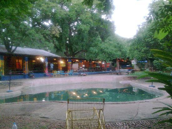 Shoestrings Backpackers Lodge: Shoestrings Vic Falls piscina o poza en medio del jardin