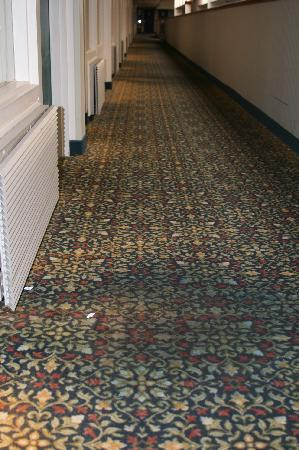 Plaza Hotel and Suites: Old carpet