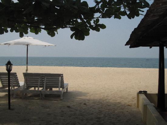OG's Beach Bungalow: The View from our Cottage - just by the Sea!