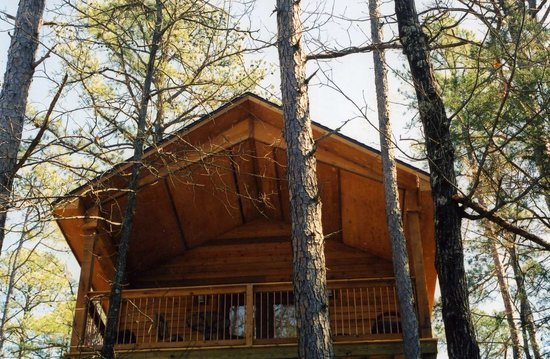 "Eureka Sunset Cabins: ""Cabins and Suites In The Treetops"""