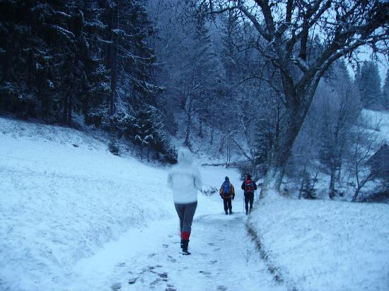 Skofja Loka, Slovenien: winter wonderland...