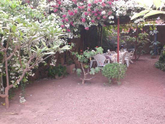 La Rose des Sables : Garten